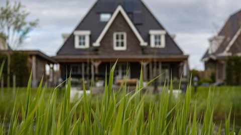 green grass infront of a house