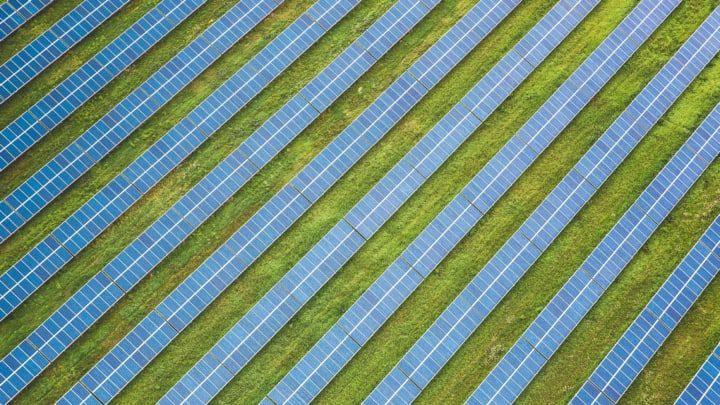 solar farm in field